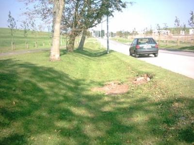 sustainable urban drainage system pdf